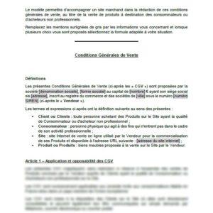 Modèle de conditions générales de vente (vente en ligne de produits à destination des consommateurs)